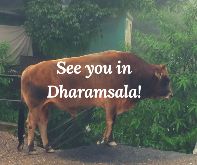 See you in Dharamsala